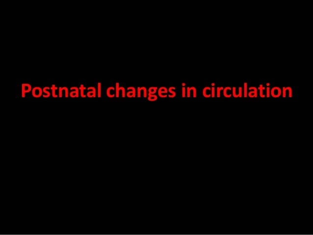 What happens at birth? • The change from fetal to postnatal circulation happens very quickly. • Changes are initiated by b...