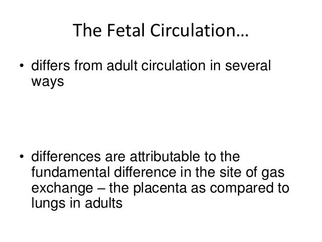 Fetal circulation & changes occurring at birth Slide 2