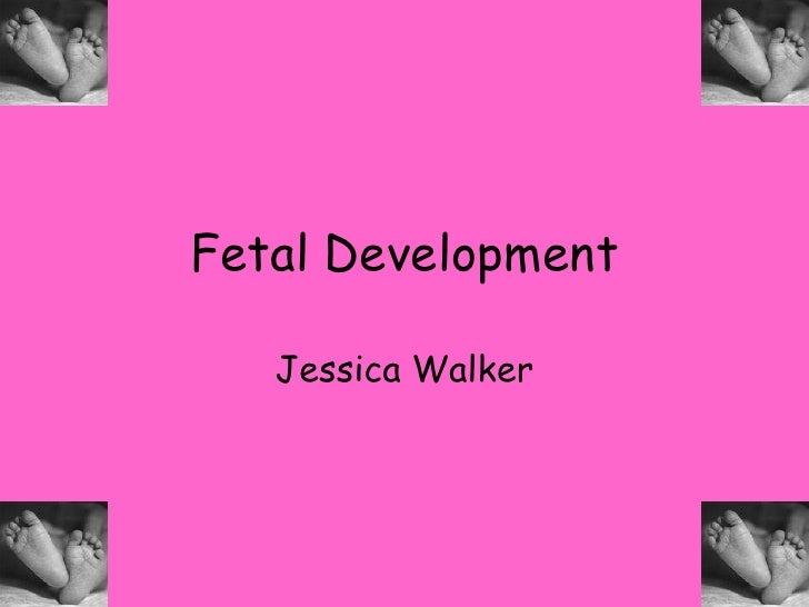 Fetal Development<br />Jessica Walker<br />