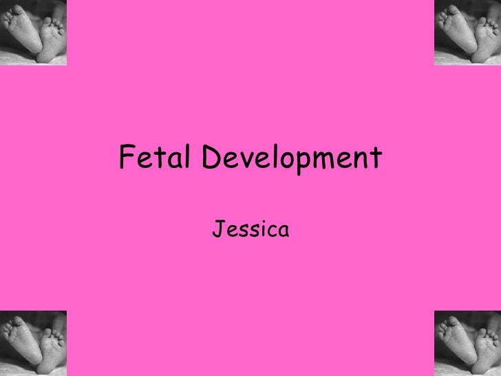 Fetal Development<br />Jessica<br />