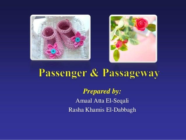 Prepared by: Amaal Atta El-Seqali Rasha Khamis El-Dabbagh