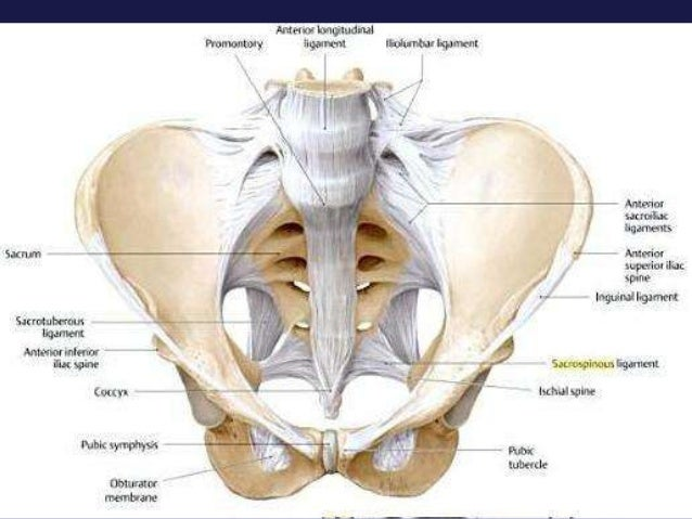 Sacral Images - Photos - Pictures - Page 2