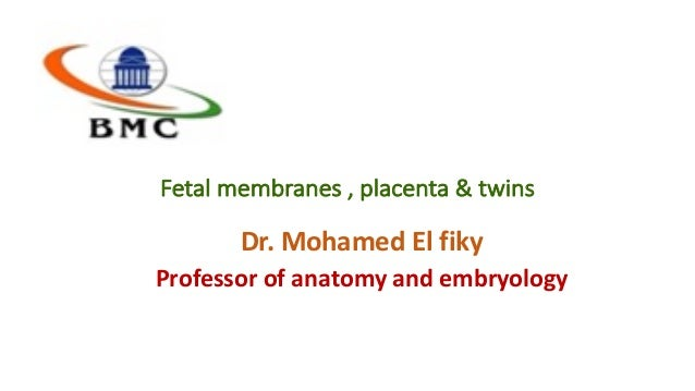 Fetalmembranes,placenta&twins Dr.MohamedElfiky Professorofanatomyandembryology