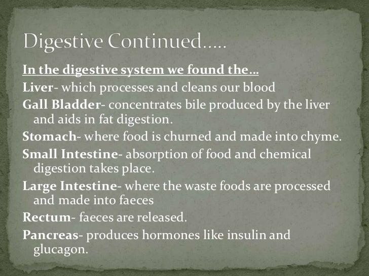 Fetal Pig Dissection Lab