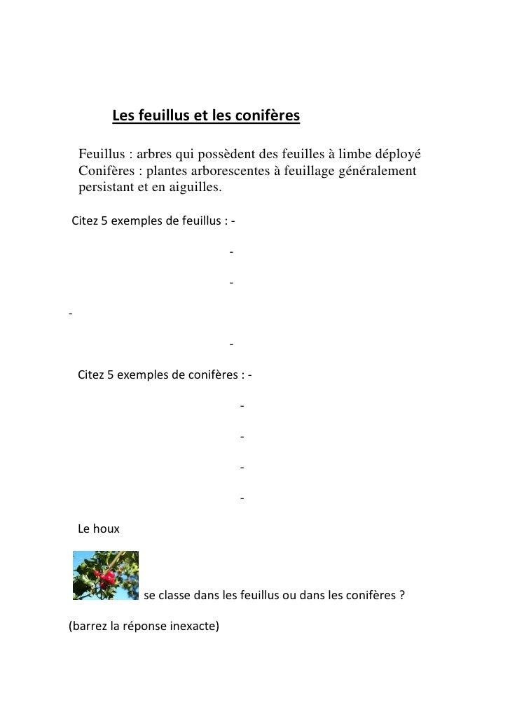 Les feuillus et les conifères    Feuillus : arbres qui possèdent des feuilles à limbe déployé    Conifères : plantes arbor...