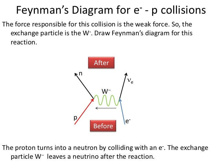 Proton Neutron In Diagram - Block And Schematic Diagrams •