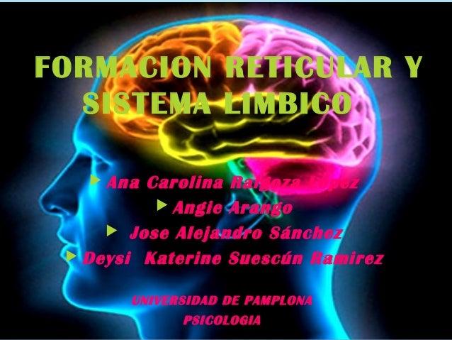 FORMACION RETICULAR Y SISTEMA LIMBICO  Ana Carolina Raigoza López  Angie Arango  Jose Alejandro Sánchez  Deysi Katerin...