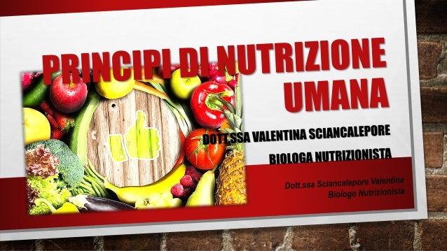I NUTRIENTI LE SOSTANZE NUTRITIVE SONO DIVISE IN CARBOIDRATI, PROTEINE, LIPIDI, MINERALI, VITAMINE E ACQUA • CARBOIDRATI, ...