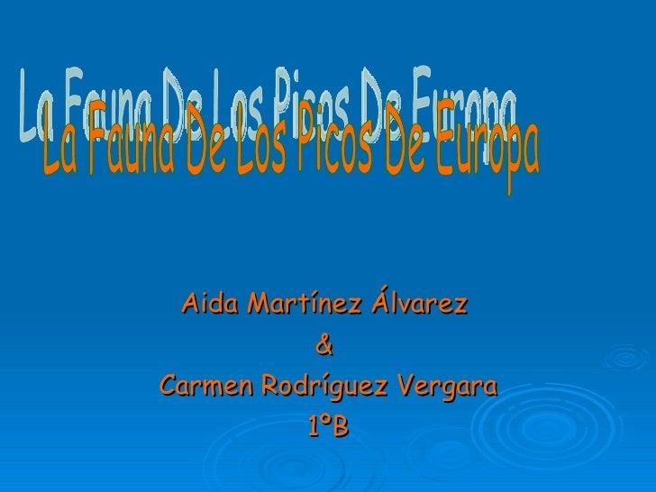 Aida Martínez Álvarez  &  Carmen Rodríguez Vergara 1ºB La Fauna De Los Picos De Europa