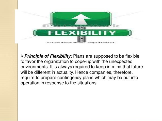Principle of Flexibility: Plans are supposed to be flexible to favor the organization to cope-up with the unexpected envi...