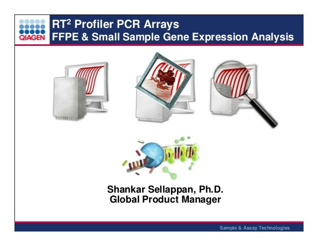 Ffpe pcr array