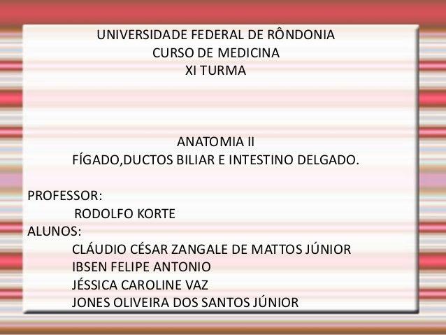UNIVERSIDADE FEDERAL DE RÔNDONIACURSO DE MEDICINAXI TURMAANATOMIA IIFÍGADO,DUCTOS BILIAR E INTESTINO DELGADO.PROFESSOR:ROD...