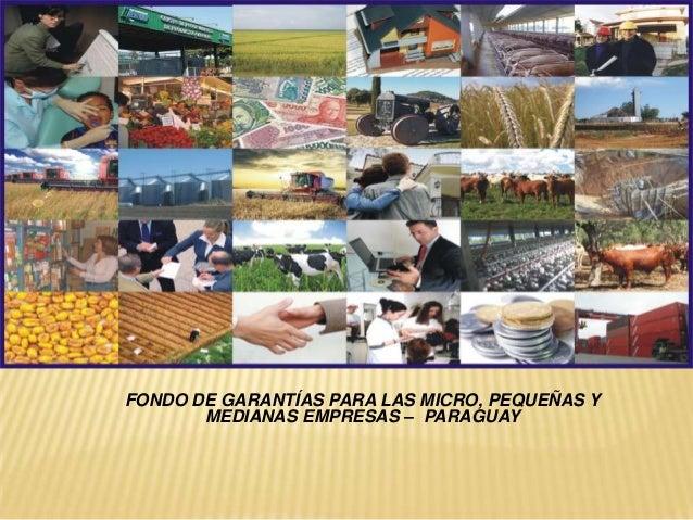 FONDO DE GARANTÍAS PARA LAS MICRO, PEQUEÑAS Y       MEDIANAS EMPRESAS – PARAGUAY