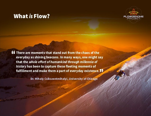 What isFlow? There are moments that stand out from the chaos of the everyday as shining beacons. In many ways, one might s...