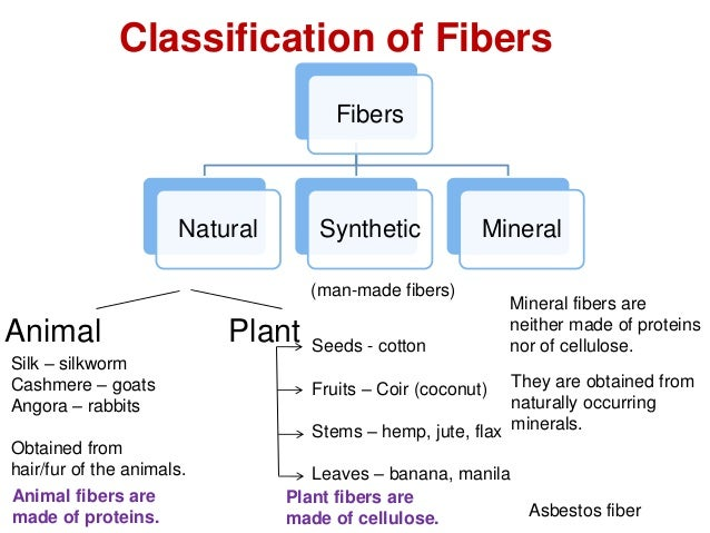 Fibers And Hairs
