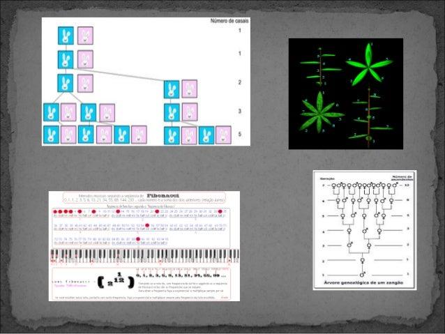 A ESPIRAL ÁUREA Um retângulo áureo tem a interessante propriedade de que, se o dividirmos num quadrado e num retângulo, o...