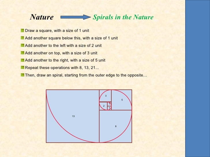 Nature                               Spirals in the NatureDraw a square, with a size of 1 unitAdd another square below thi...