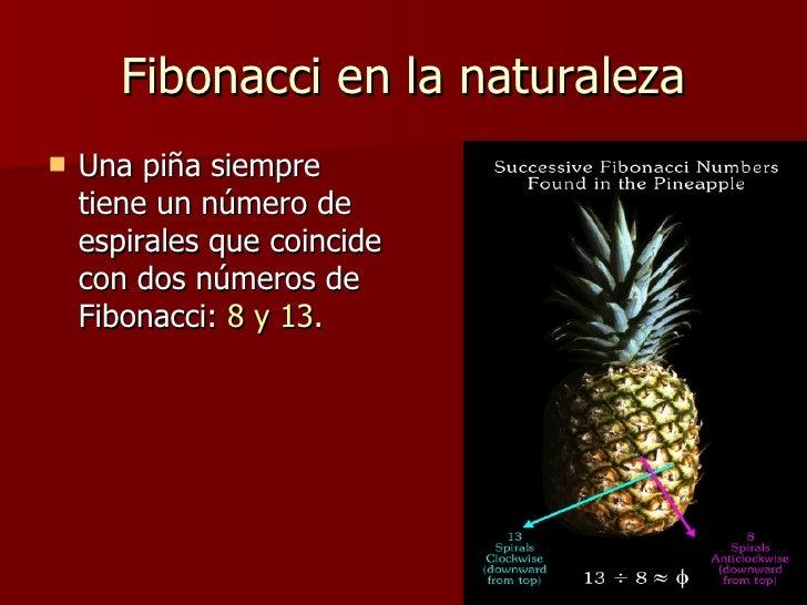 Fibonacci y los números grandes