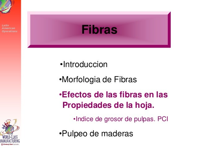 Fibra y su microscopia sus efectos en el papel - Maderas lamelas ...