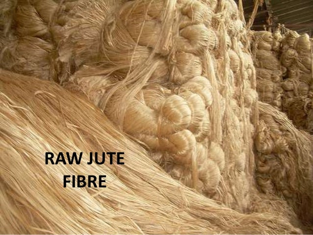 natural fibre essay Natural fibre composites in structural components: alternative applications for sisal w d (rik) brouwer the netherlands 1 introduction the use of composite materials dates from.