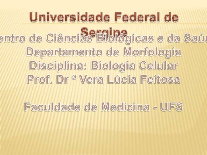 ACADÊMICOS: Anastácia Soares Caio Menezes Ivan Mendes Ribeiro Mariana Aragão Mayne B. Fontes