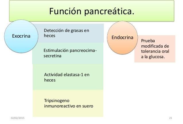 PRUEBAS FUNCION PANCREATICA PDF DOWNLOAD