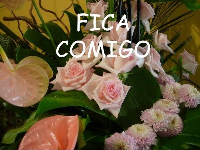 FICA COMIGO