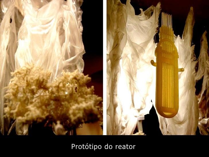 Protótipo do reator