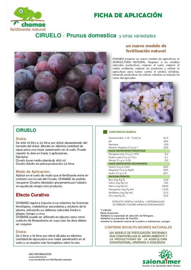 FICHA DE APLICACIÓN MÁS INFORMACION www.chamae.es www.facebook.com/fertilizante.organico CIRUELO · Prunus domestica y otra...