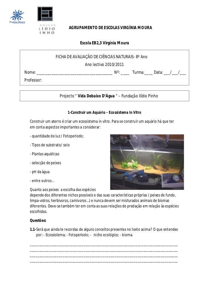 AGRUPAMENTO DE ESCOLAS VIRGÍNIA MOURA                                    Escola EB2,3 Virgínia Moura                     F...