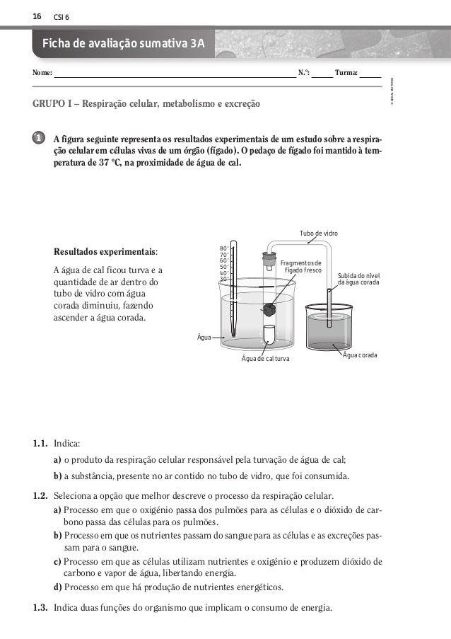 CSI 616©AREALEDITORESNome: N.º: Turma:Ficha de avaliação sumativa 3AA figura seguinte representa os resultados experimenta...