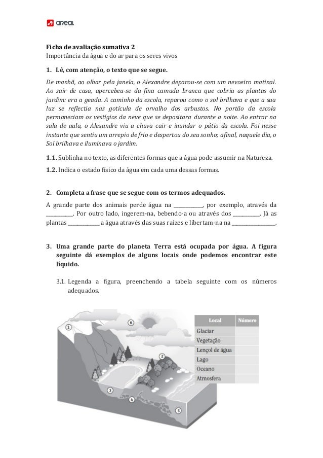 Ficha de avaliação sumativa 2 Importância da água e do ar para os seres vivos 1. Lê, com atenção, o texto que se segue. De...