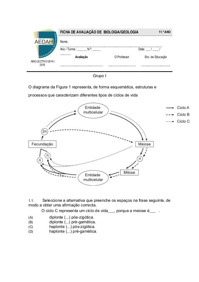 Grupo I  O diagrama da Figura 1 representa, de forma esquemática, estruturas e  processos que caracterizam diferentes tipo...