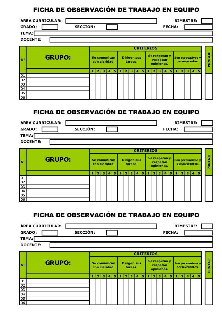 FICHA DE OBSERVACIÓN DE TRABAJO EN EQUIPOÁREA CURRICULAR:                                                                 ...
