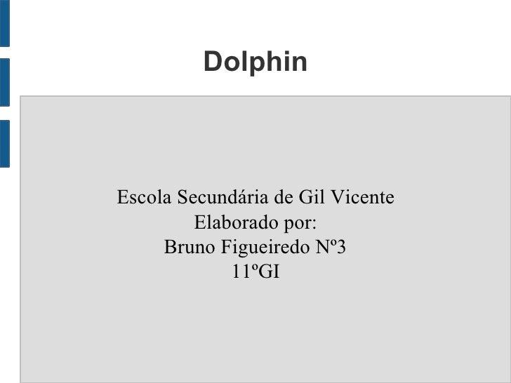 DolphinEscola Secundária de Gil Vicente         Elaborado por:     Bruno Figueiredo Nº3             11ºGI