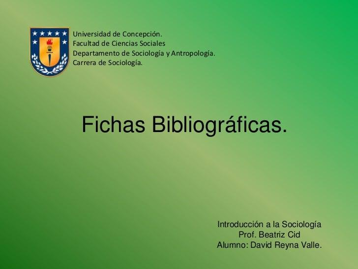 Universidad de Concepción.<br />Facultad de Ciencias Sociales<br />Departamento de Sociología y Antropología.<br />Carrera...