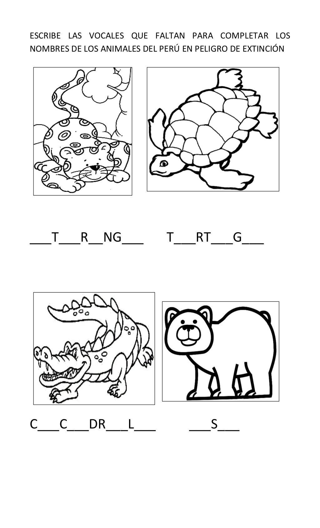 Fichas de animales