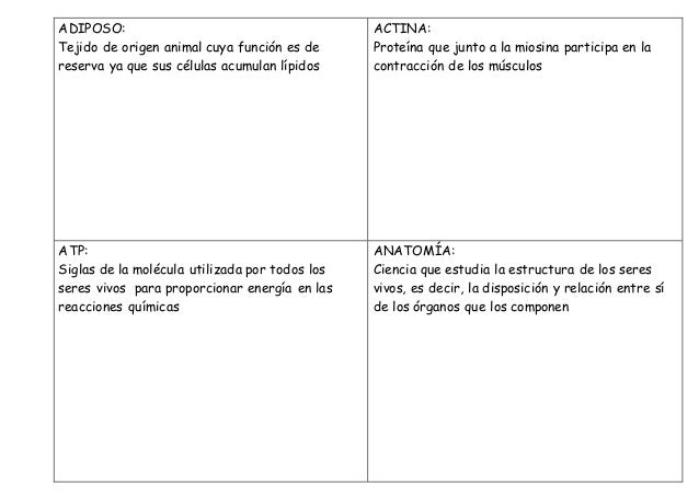 definiciones Anatomía Aplicada