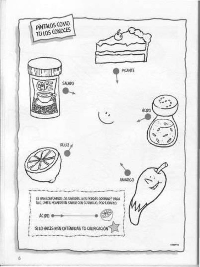 Actividades De Los 5 Sentidos Para Preescolar Imagui Wallpaperzenorg