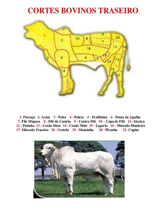CORTES BOVINOS TRASEIRO 1- Pescoço 2- Acém 3 - Peito 4 - Paleta 5 - Fraldinha 6 - Ponta de Agulha 7- File Mignon 8 - Filé ...