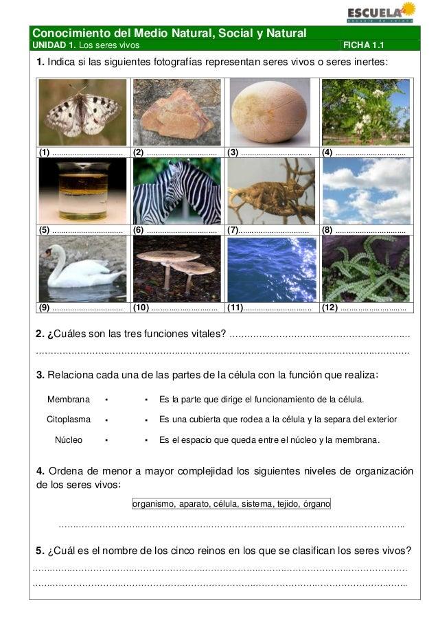 Conocimiento del Medio Natural, Social y Natural UNIDAD 1. Los seres vivos FICHA 1.1 1. Indica si las siguientes fotografí...