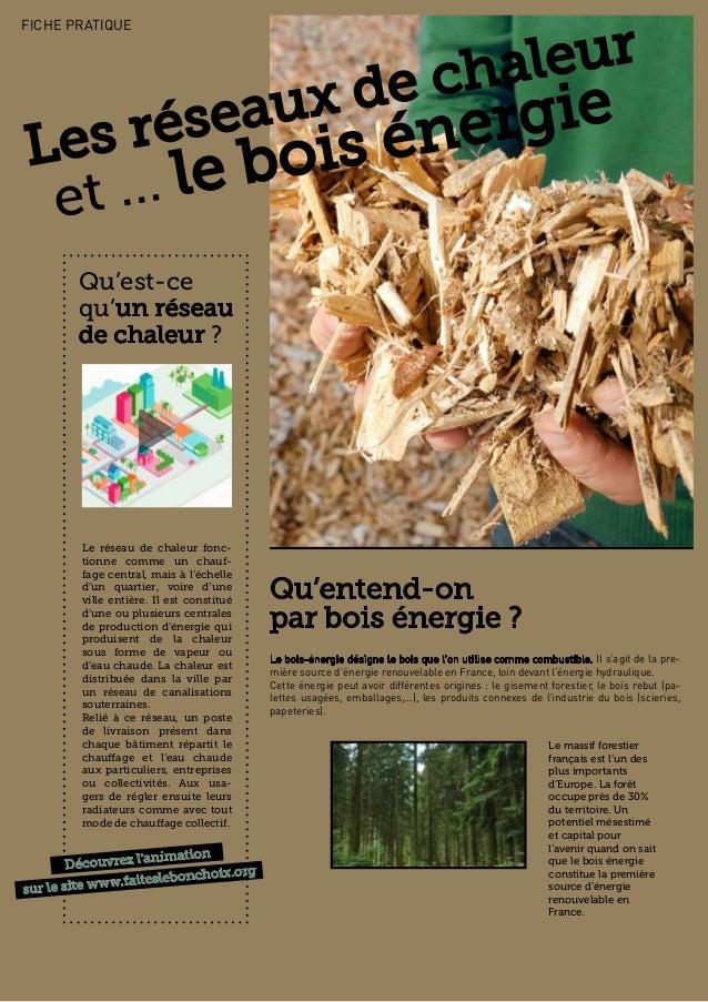 Le bois-énergie désigne le bois que l'on utilise comme combustible. Il s'agit de la pre- mière source d'énergie renouvelab...