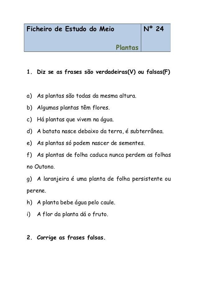 1. Diz se as frases são verdadeiras(V) ou falsas(F) a) As plantas são todas da mesma altura. b) Algumas plantas têm flores...
