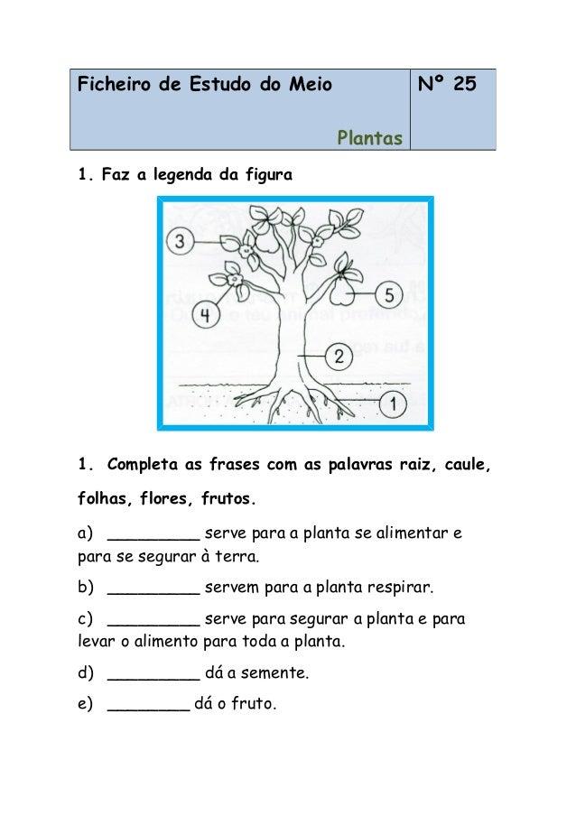 1. Faz a legenda da figura 1. Completa as frases com as palavras raiz, caule, folhas, flores, frutos. a) _________ serve p...