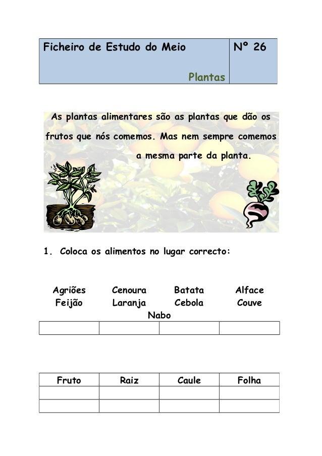As plantas alimentares são as plantas que dão os frutos que nós comemos. Mas nem sempre comemos a mesma parte da planta. 1...