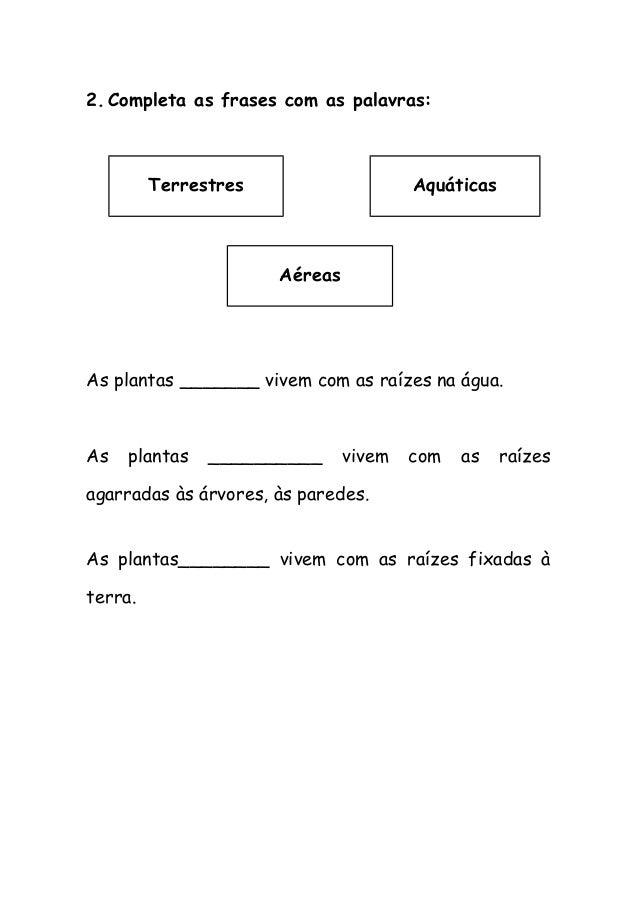2.Completa as frases com as palavras: As plantas _______ vivem com as raízes na água. As plantas __________ vivem com as r...