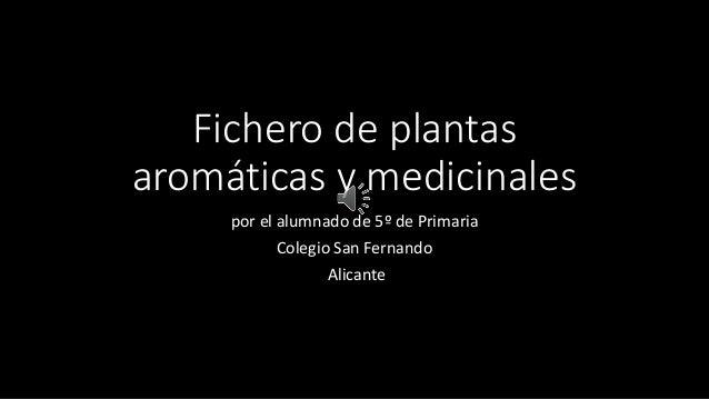Fichero de plantas  aromáticas y medicinales  por el alumnado de 5º de Primaria  Colegio San Fernando  Alicante