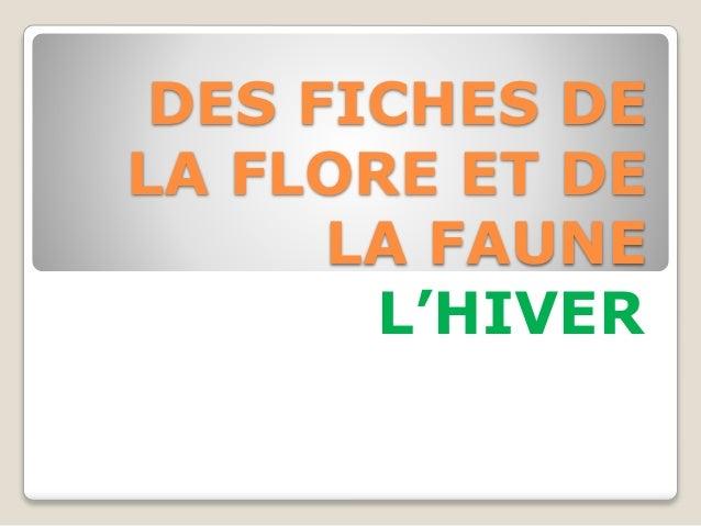 DES FICHES DE LA FLORE ET DE LA FAUNE L'HIVER