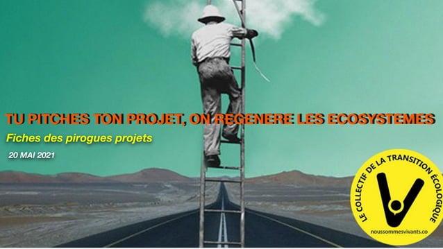 Fiches des pirogues projets TU PITCHES TON PROJET, ON REGENERE LES ECOSYSTEMES 20 MAI 2021