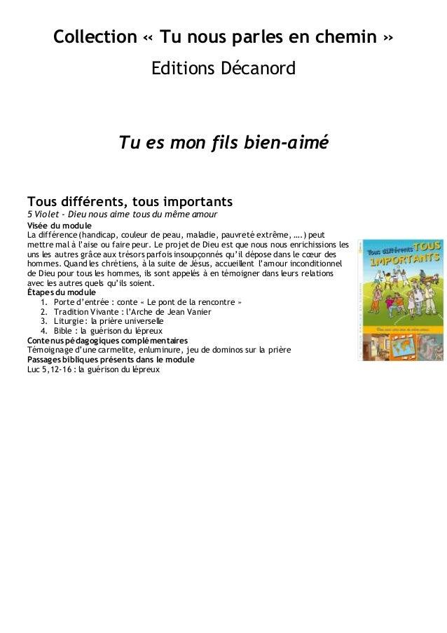 Collection « Tu nous parles en chemin » Editions Décanord Tu es mon fils bien-aimé Tous différents, tous importants 5 Viol...